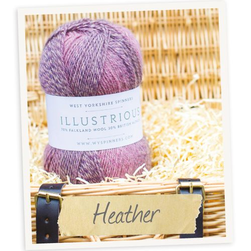 *Heather* Illustrious DK